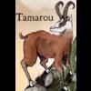 Tamaroulogo
