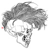 Hair skull